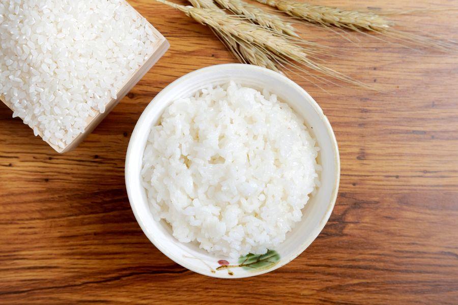 riz contre la diarrhée chez le chien