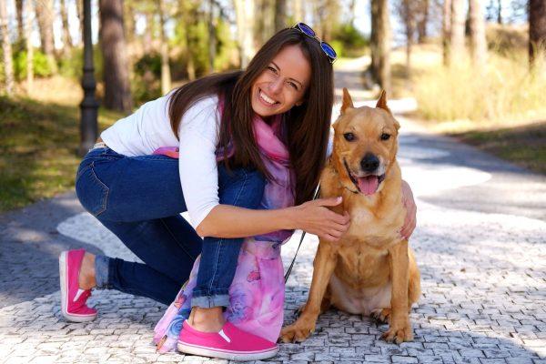 formation chien categorisé gironde